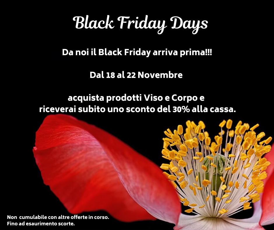 Read more about the article Black Friday Days